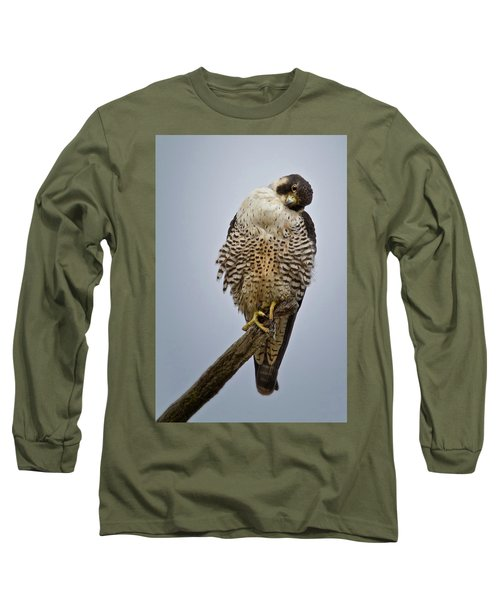 Falcon With Cocked Head Long Sleeve T-Shirt