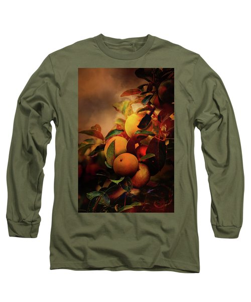 Fall Apples A Living Still Life Long Sleeve T-Shirt