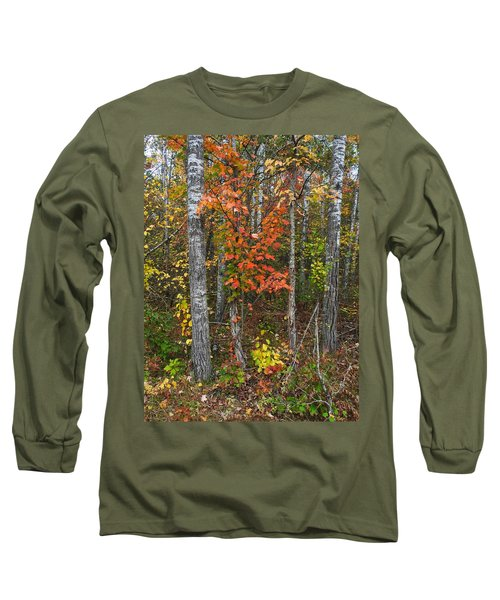 Fall Color At Gladwin 4543 Long Sleeve T-Shirt