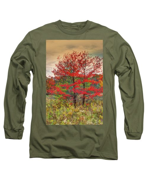 Long Sleeve T-Shirt featuring the photograph Fall Painting by Skip Tribby