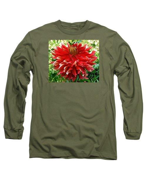 Fancy Red Dahlia Long Sleeve T-Shirt