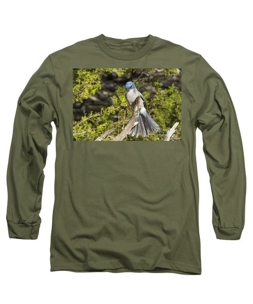 Fanning Scrub Jay Long Sleeve T-Shirt