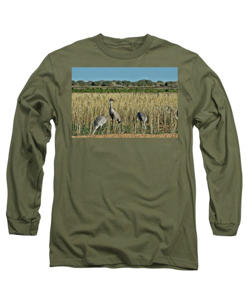 Feeding Greater Sandhill Cranes Long Sleeve T-Shirt