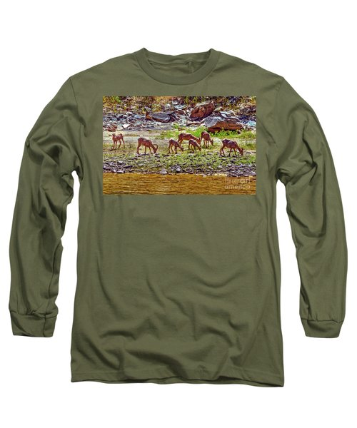 Long Sleeve T-Shirt featuring the photograph Feeding Mountain Sheep by Robert Bales