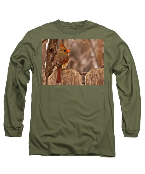 Female Cardinal On The Fence Long Sleeve T-Shirt