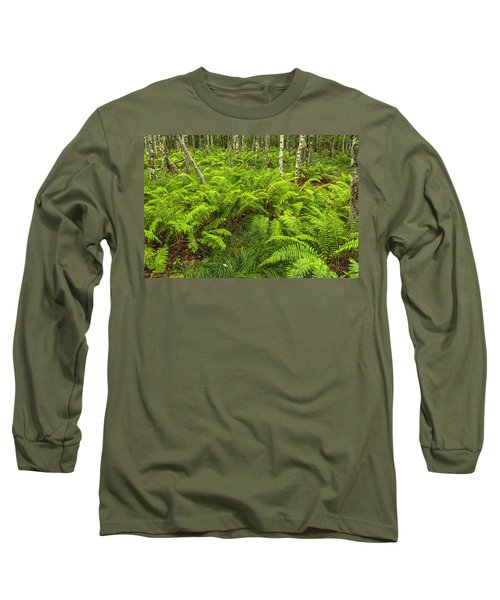 Ferns And Birch In Soft Light Long Sleeve T-Shirt
