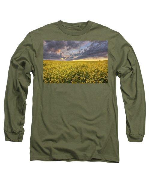 Field Of Gold Long Sleeve T-Shirt by Dan Jurak