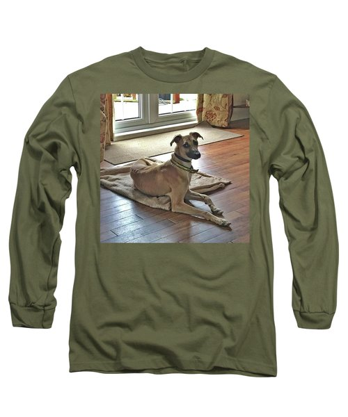 Finly - Ava The Saluki's New Companion Long Sleeve T-Shirt