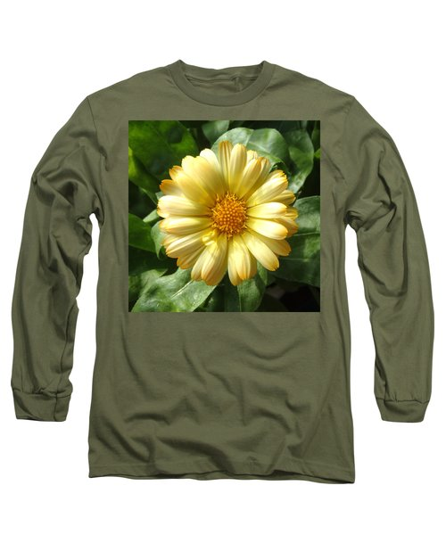 First Sign Of Summer Long Sleeve T-Shirt