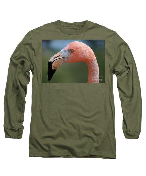 Flamingo Protrait Long Sleeve T-Shirt by Marty Fancy