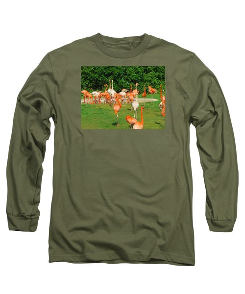 Flamingo Sunbathe Long Sleeve T-Shirt