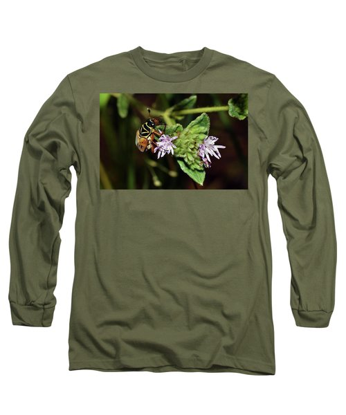 Flower Scarab - Trigonopeltastes Delta Long Sleeve T-Shirt
