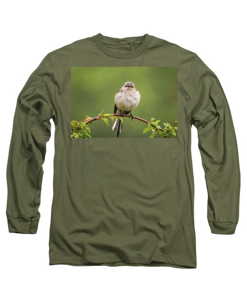 Fluffy Mockingbird Long Sleeve T-Shirt by Terry DeLuco