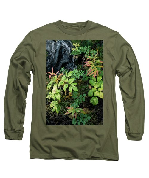 Forest Floor In Early Autumn Long Sleeve T-Shirt