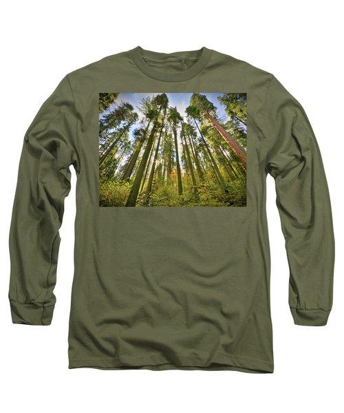 Forest Of Light Long Sleeve T-Shirt