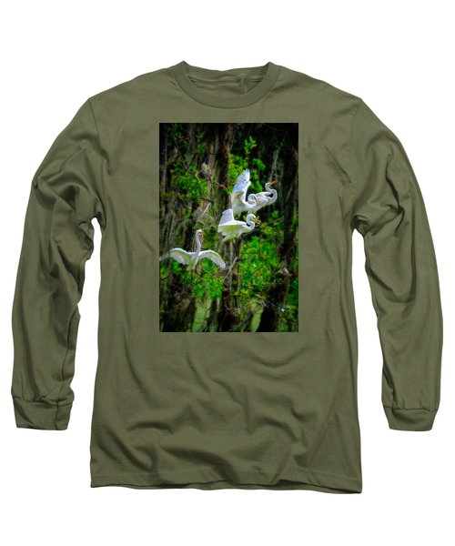 Long Sleeve T-Shirt featuring the photograph Four Egrets by Harry Spitz