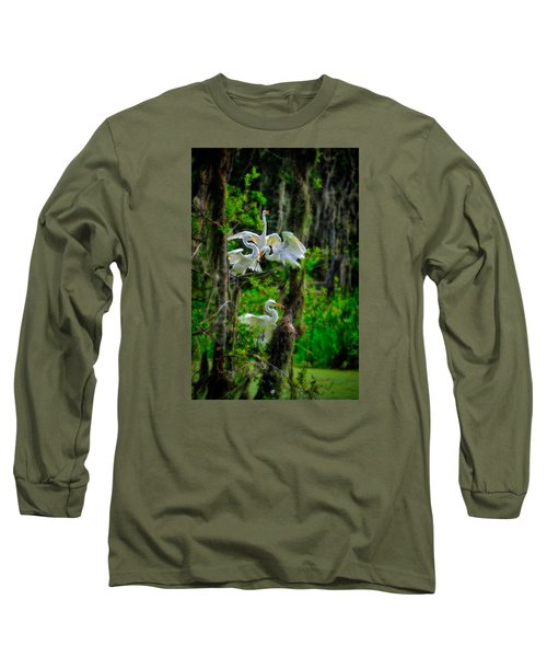 Long Sleeve T-Shirt featuring the photograph Four Egrets In Tree by Harry Spitz