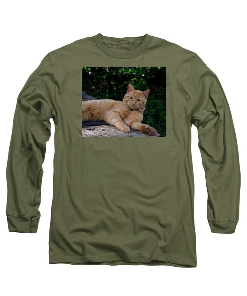 Franklin Long Sleeve T-Shirt by Karen Harrison