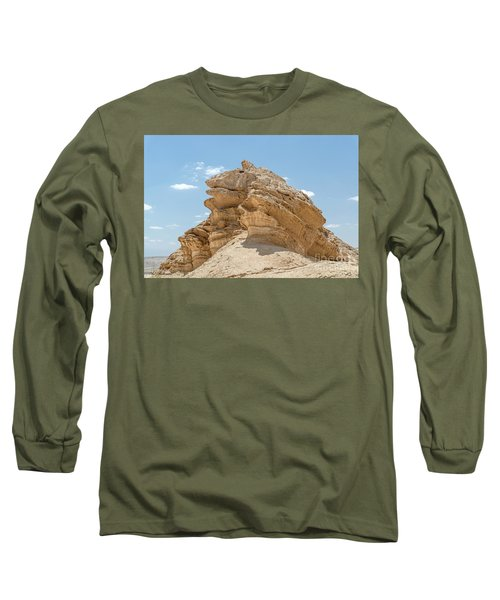 Frog Rock Long Sleeve T-Shirt by Arik Baltinester