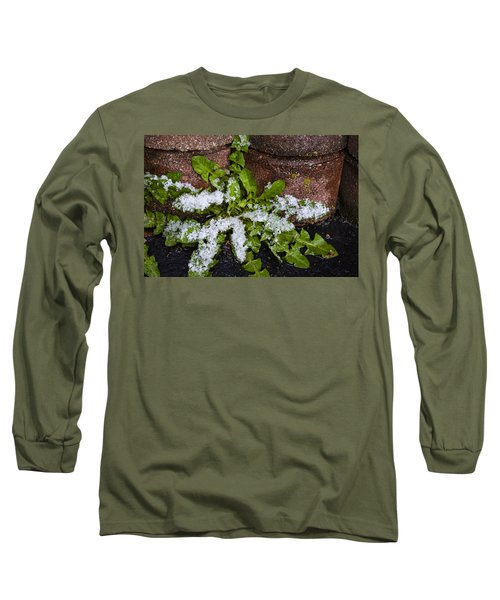 Long Sleeve T-Shirt featuring the photograph Frosted Dandelion Leaves by Deborah Smolinske