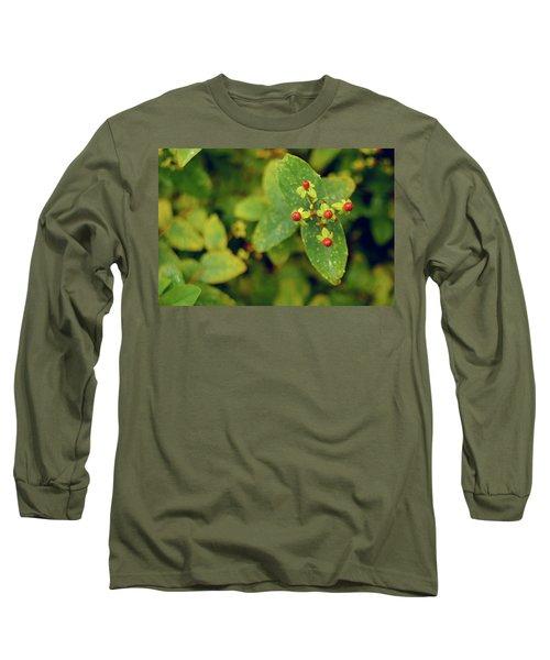 Fall Berry Long Sleeve T-Shirt