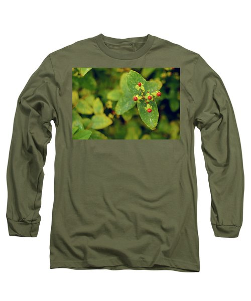 Fall Berry Long Sleeve T-Shirt
