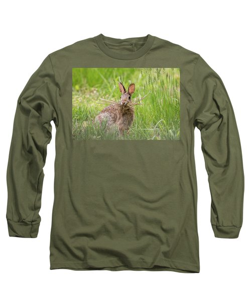 Gathering Rabbit Long Sleeve T-Shirt by Terry DeLuco