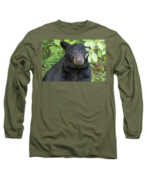 Gazing Black Bear Long Sleeve T-Shirt