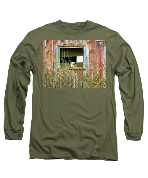 Goat In The Window Long Sleeve T-Shirt by Donald C Morgan