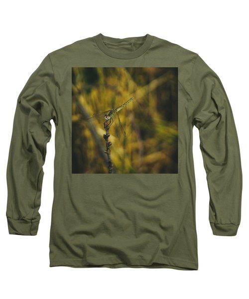 Golden Drangonfly Long Sleeve T-Shirt by Cesare Bargiggia
