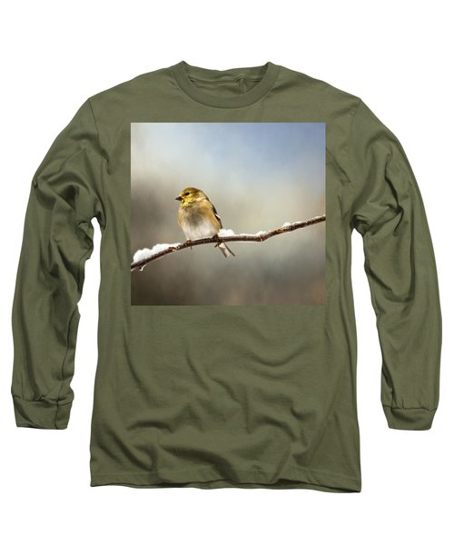 Goldfinch After A Spring Snow Storm Long Sleeve T-Shirt by Betty Pauwels