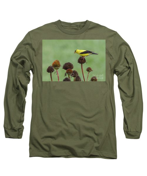 Goldfinch And Coneflowers Long Sleeve T-Shirt