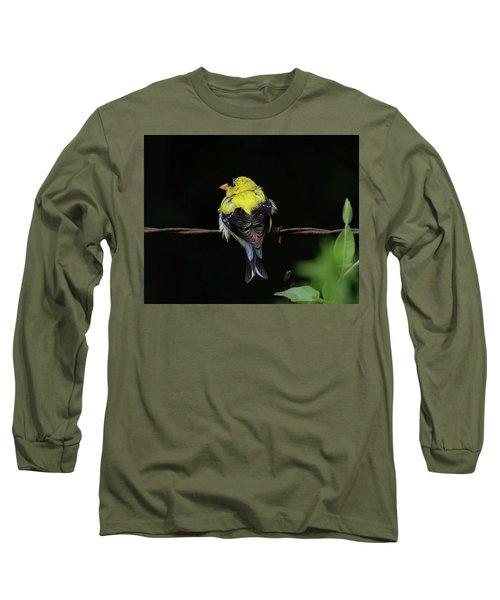 Goldfinch Long Sleeve T-Shirt by Ronda Ryan