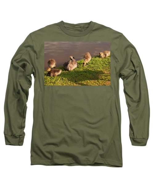 Long Sleeve T-Shirt featuring the photograph Goslings Basking In The Sunset by Chris Flees