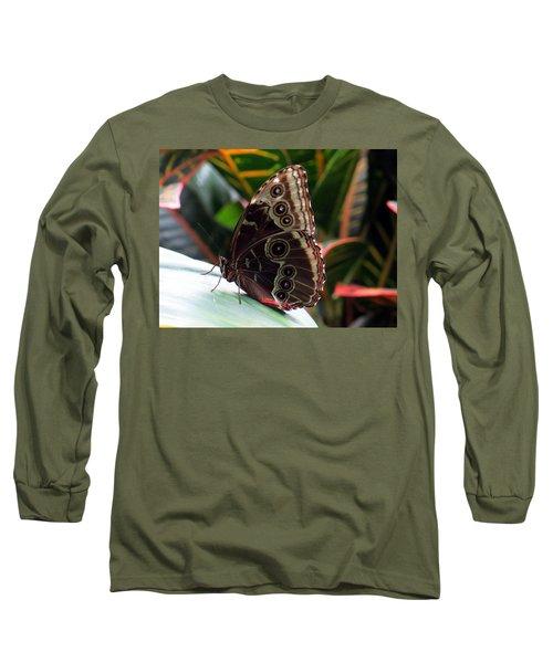 Gray Cracker Butterfly Long Sleeve T-Shirt by Betty Buller Whitehead