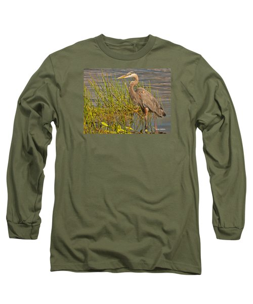 Long Sleeve T-Shirt featuring the photograph Great Blue At The Park by Don Durfee