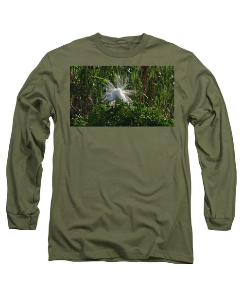 Great Egret Displays Windy Mating Plumage Long Sleeve T-Shirt