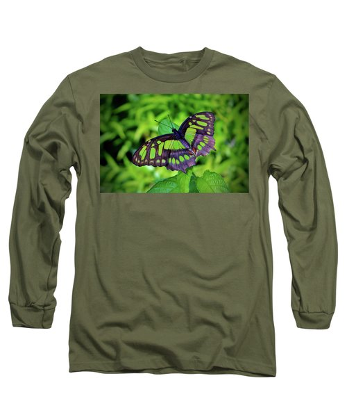 Green And Black Butterfly Long Sleeve T-Shirt