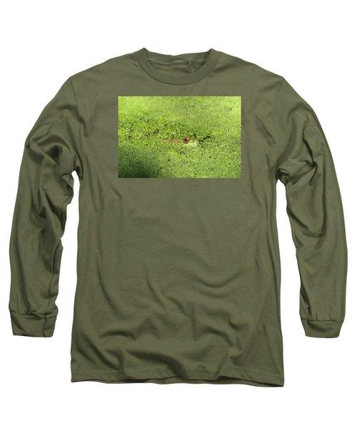 Green Frog Stony Brook New York Long Sleeve T-Shirt by Bob Savage