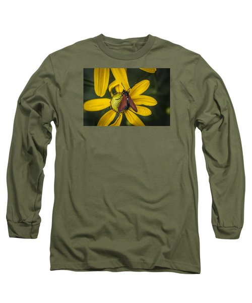 Green Headed Coneflower Moth Long Sleeve T-Shirt by Rich Franco