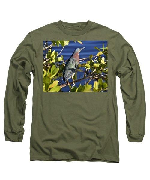 Green Heron Long Sleeve T-Shirt by Carol Bradley