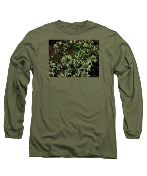 Green Thistles In Botanical Garden Of Bern Long Sleeve T-Shirt