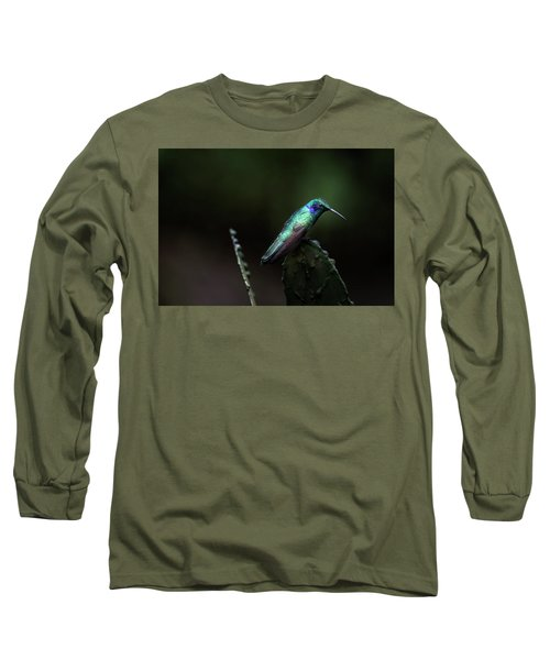 Green Violet Ear Hummingbird Long Sleeve T-Shirt