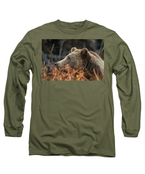 Grizzly Bear Portrait In Fall Long Sleeve T-Shirt