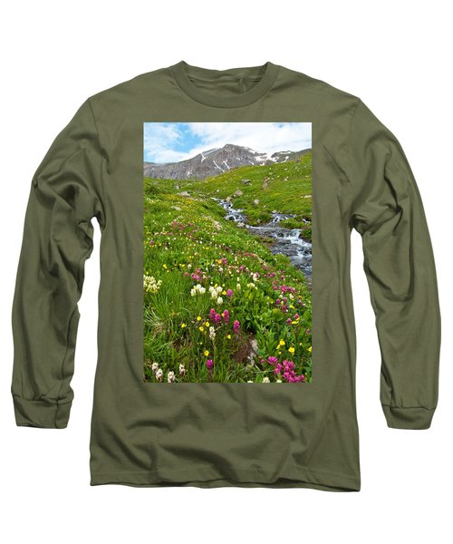 Handie's Peak And Alpine Meadow Long Sleeve T-Shirt