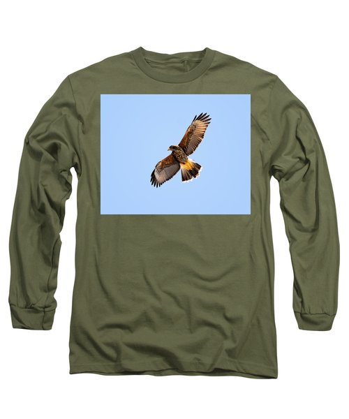 Long Sleeve T-Shirt featuring the photograph Harris's Hawk H37 by Mark Myhaver