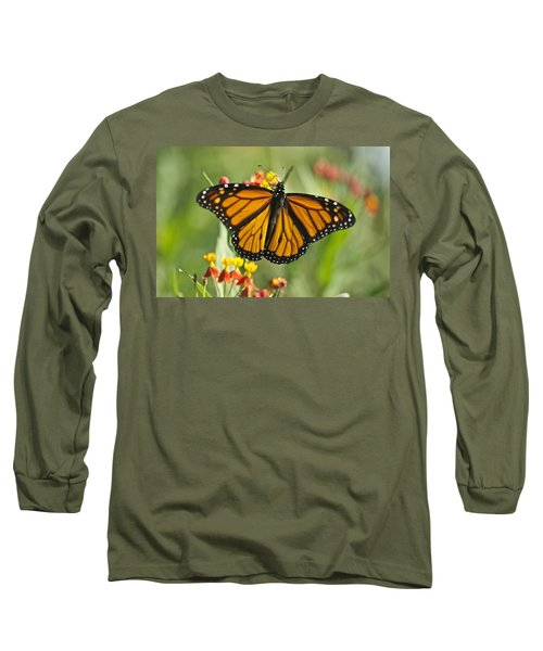 Hawaiian Monarch 3 Long Sleeve T-Shirt