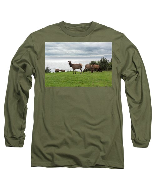 Herd Of Elk At Ecola State Park Long Sleeve T-Shirt