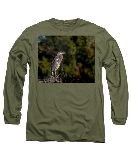 Heron At Sunrise Long Sleeve T-Shirt by Martina Thompson