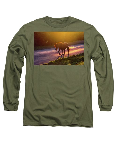 Horse Crossing The Road At Sunset Long Sleeve T-Shirt